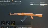 刺激战场akm突击步枪:关于AKM步枪的技巧使用