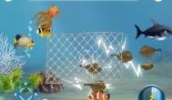 手机捕鱼游戏能赚钱是真的吗?教你如何玩捕鱼领微信红包
